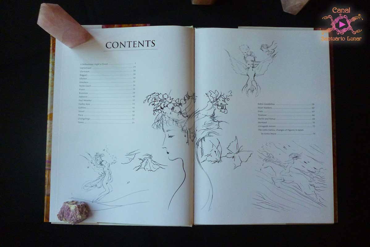 Witchcraft books - Fairies by Yoshitaka Amano - Contents