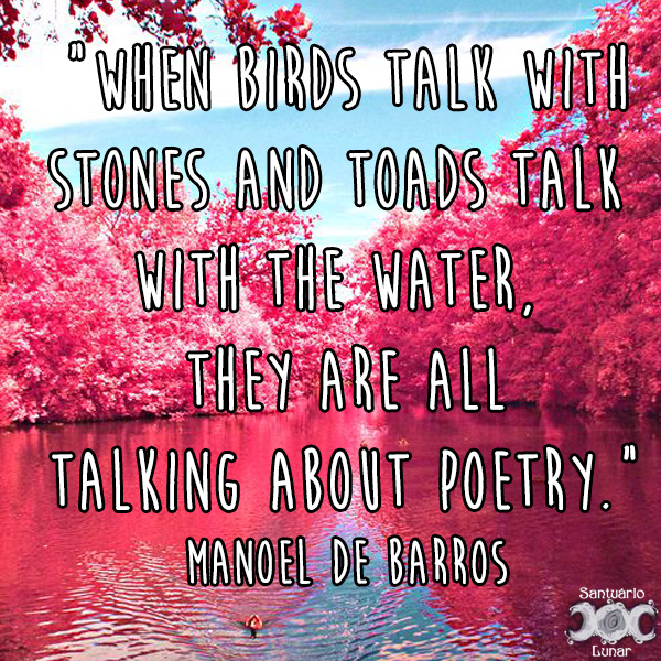 Nature is my church - 15 When birds talk with stones and toads talk with the water, they are all talking about poetry