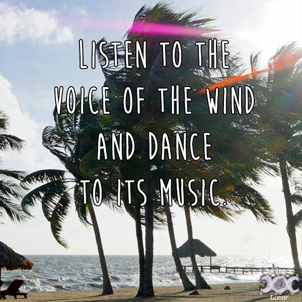 Nature is my church - 16 Listen to the voice of the wind and dance to its music