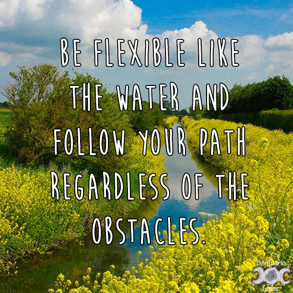 Nature is my church - 26 Be flexible like the water and follow your path regardless of the obstacles