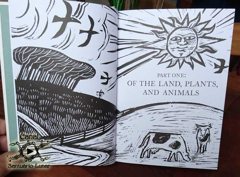 A Treasury of British Folklore: Part 1 - Of the Land, Plants and Animals