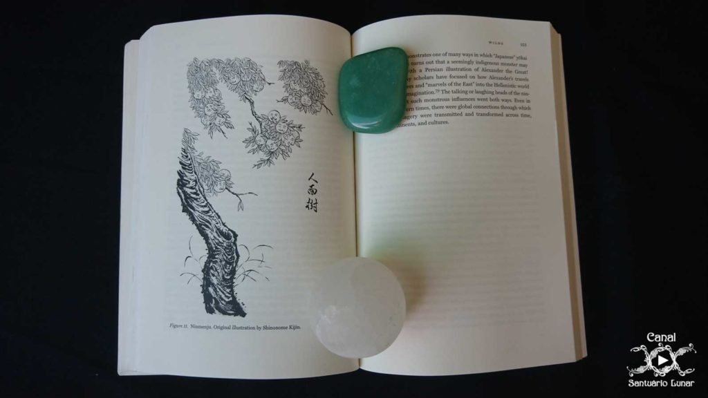 The Book of Yokai - Jinmenju