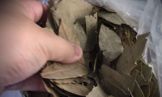 Use a lot of Bay Leaves for the ritual